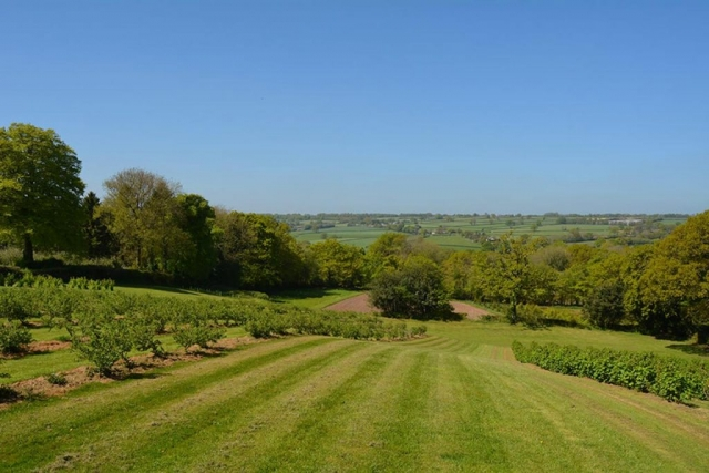 Royal Oak Farm accommodation views