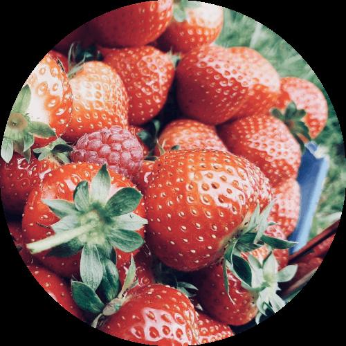 A punnet of strawberries at royal oak farm