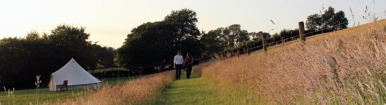 wedding guests at Royal Oak Farm