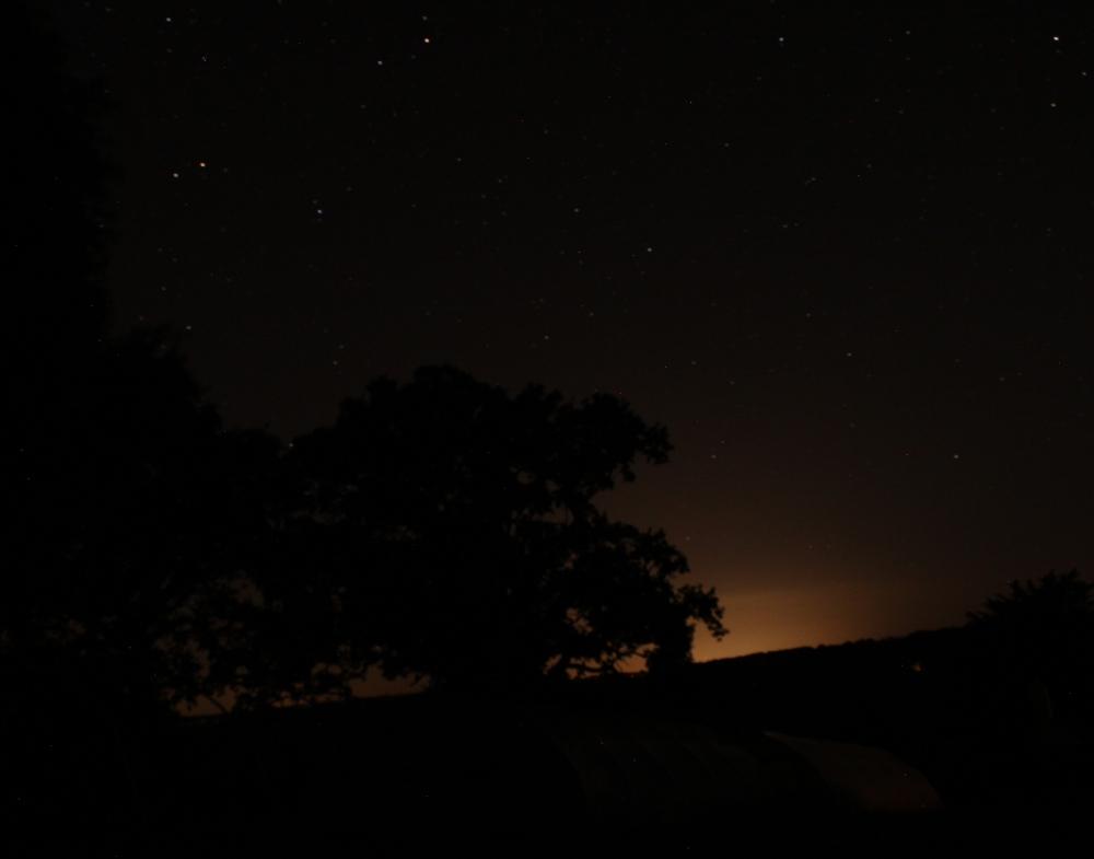 starlit horizon at royal oak farm